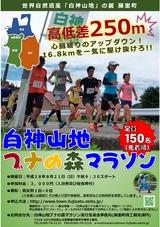 藤里町「白神山地ブナの森マラソン」2016